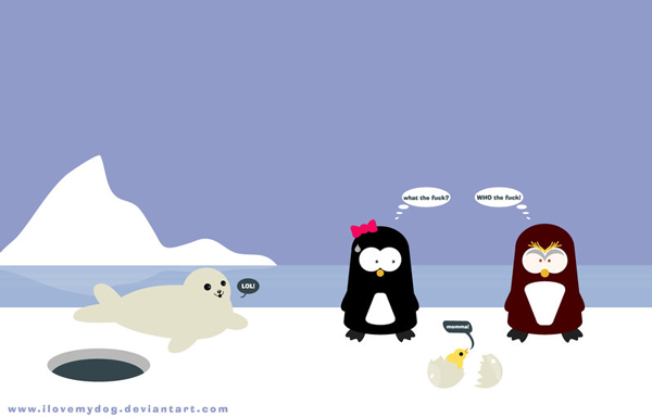 12 funny winter wallpapers voltagebd Choice Image
