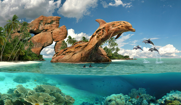dolphin paradise photo manipulation
