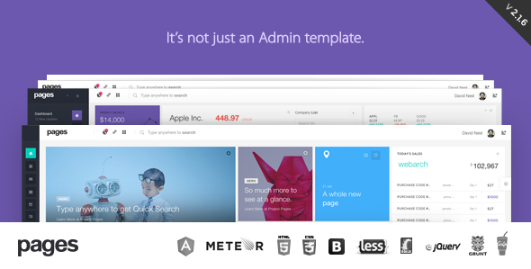 pages-admin-template-angularjs-meteor