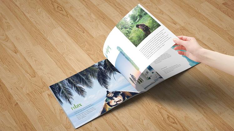 bloomfield resort brochure