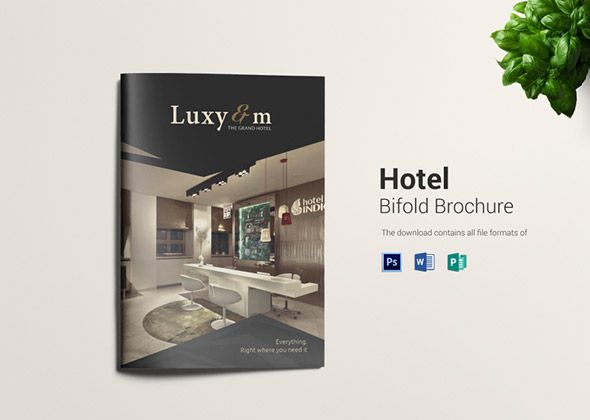 luxy m bifold template brochure