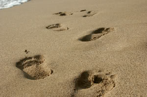 steps-in-the-sand