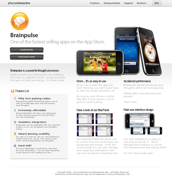 brainpulse-website-layout